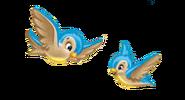 Birdspic