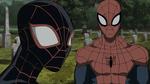 Miles Morales & Spider-Man USMWW 3