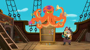 Octopus steeling hooks