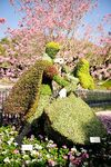 Sleeping Beauty Topiary