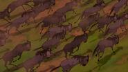 Lion-king-disneyscreencaps com-3869