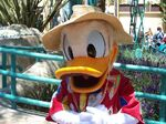 Donald-duck-disney-s