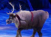 Sven Disney on ice