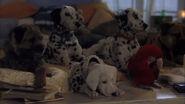 102-dalmatians-disneyscreencaps com-4933