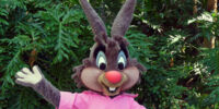 Br'er Rabbit Costumes Through the Years