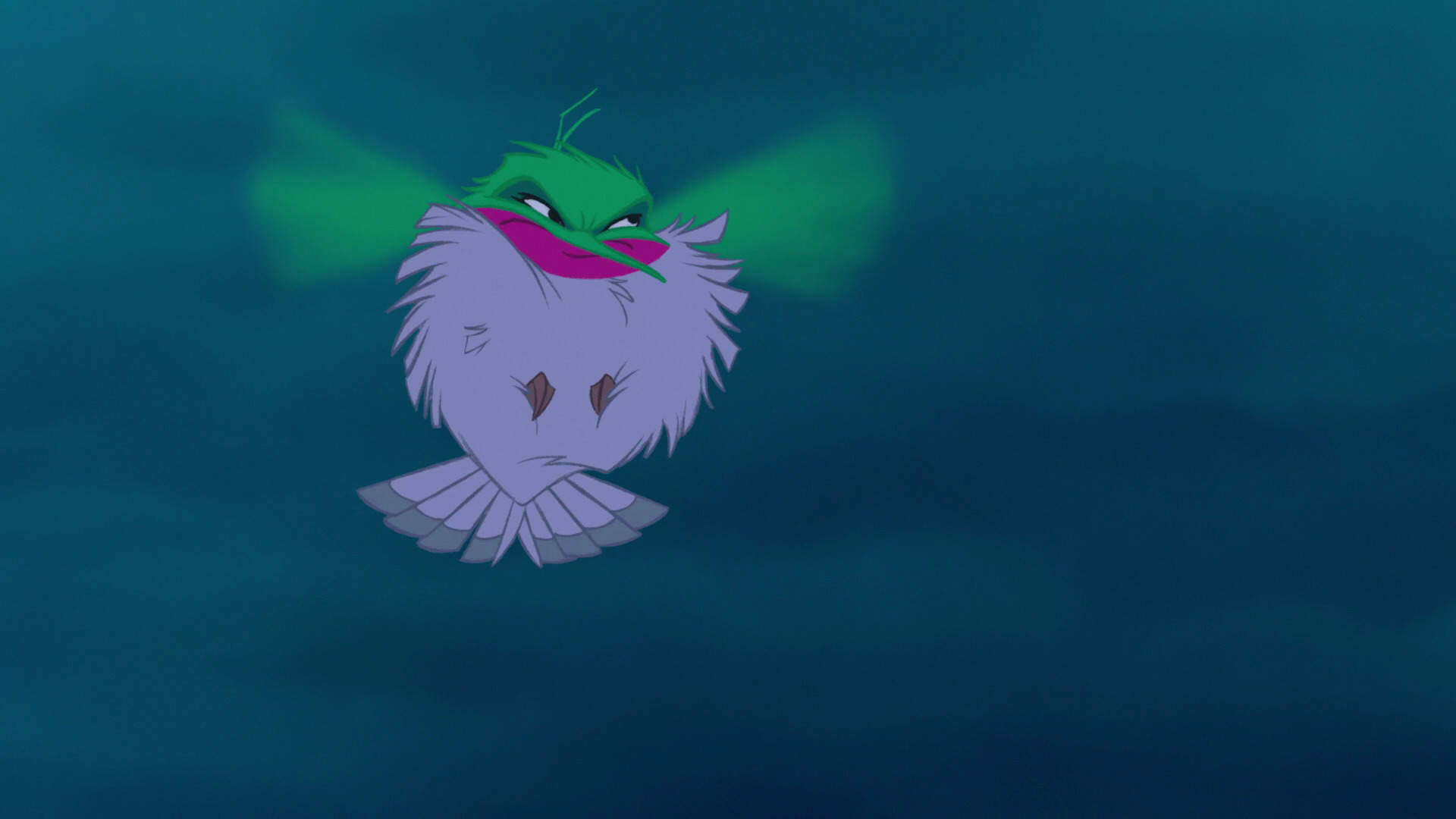 File:Flit puffed up.jpg