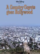 A country coyote goes hollywood