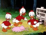 Huey, Dewey and Louie-Don's Fountain Of Youth