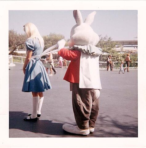 File:Disneyland alice and rabbit apron strings photograph 640.jpg