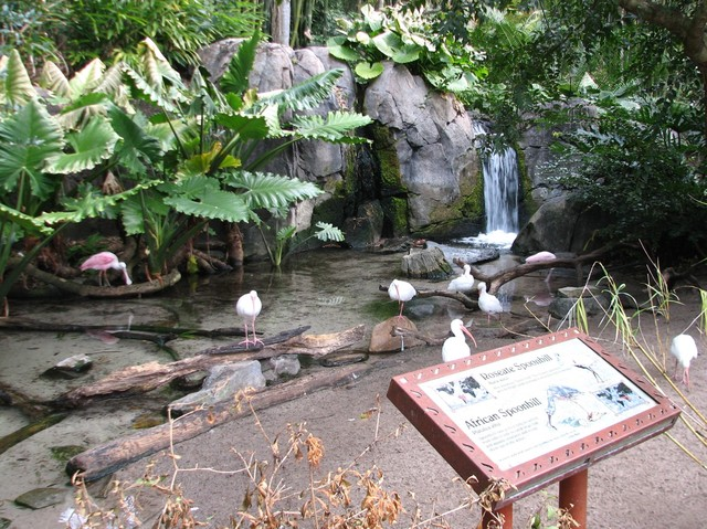 File:The Oasis Exhibits.jpg