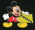 Kansas Pin
