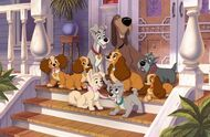 Lady and the Tramp 2 Promotional Images - 2