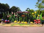 Pixie Hollow at Hong Kong Disneyland