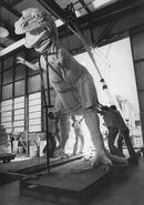 Imagineers assembling the T. Rex from World of Energy