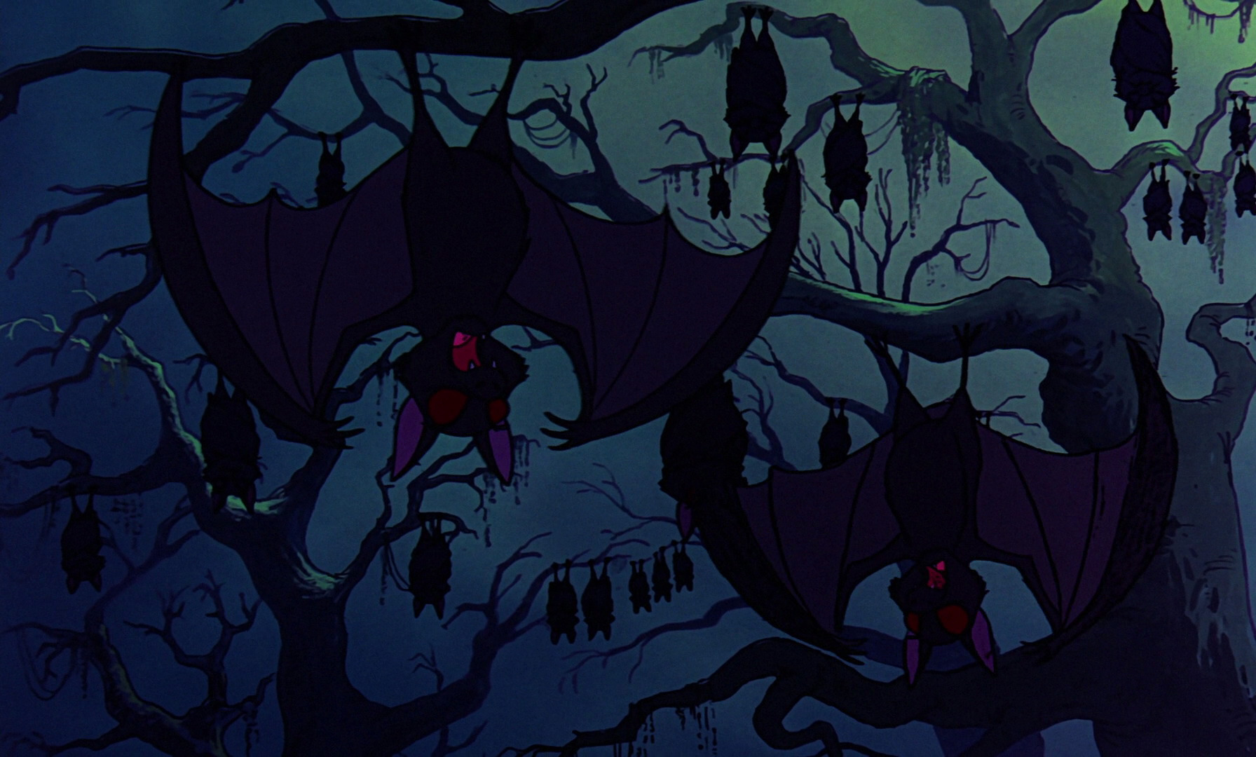 Category Bats Wickedpedia Fandom Powered By Wikia