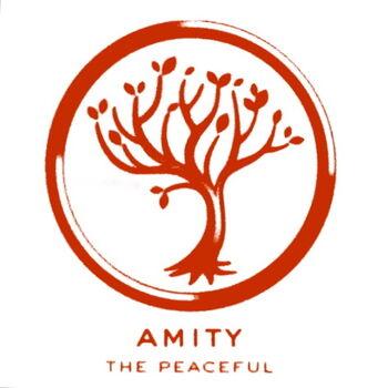 amity divergent wiki fandom powered by wikia