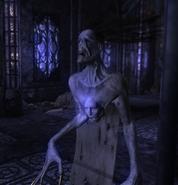 Divinity 2 Velanir ghost 2