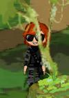 Dizzywood stealth gear