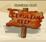 Places cerulean reef