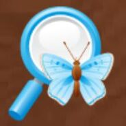 Charm ecology magnifying glass
