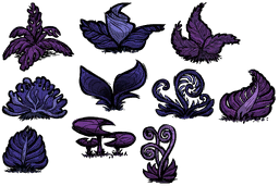 how to get flowers on dont starve together