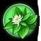 Plants Thumbnail