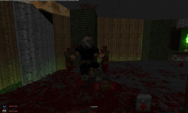 File:Screenshot Doom 20130819 232434 01.png