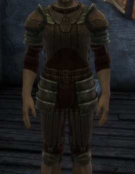 File:Scale Armor.png