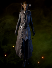 File:Crafted Sturdy Hunter Coat.png