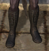 File:Orlesian Silk Boots.png