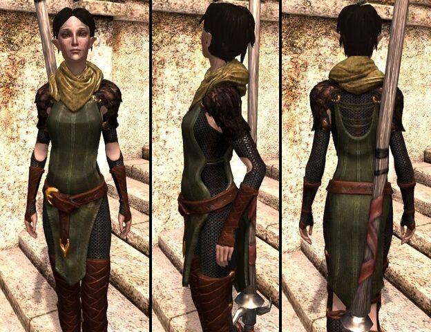 File:DA2 Vestments of the First - Merrill companion armor.jpg
