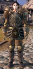 ChevalierArmorSetTier4