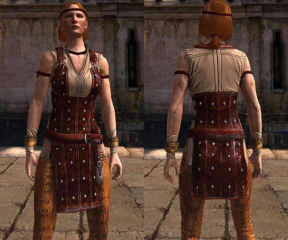 File:DA2 Modified Officers' Issue (Aveline Vallen - Companion armor) - Front.jpg