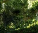 Arbor Wilds
