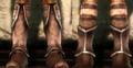 Dalish Boots.png