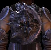 File:Small Darkspawn Shield.png