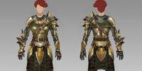 Heavy chestpieces (Origins)