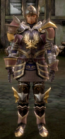 WardenCommanderArmorSet