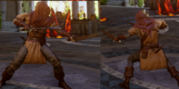 Elite Assassin's Mantle