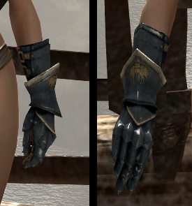 File:Raider Gauntlets.png