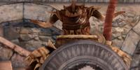 Shield of the Legion (Darkspawn Chronicles)