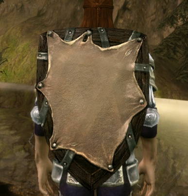 File:Wooden Kite Shield.png