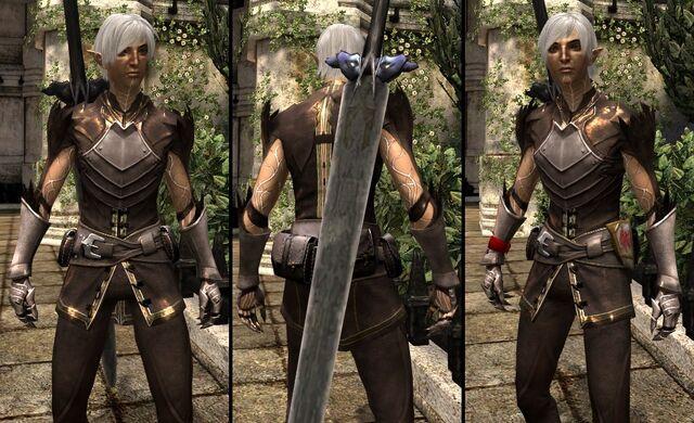 File:DA2 Grafted Spirit Hide - Fenris companion armor.jpg