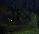 Codex entry: Tears in the Veil