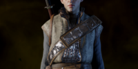 Reinforced Enchanter Armor