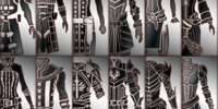 Companion armor