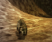 NPC-MouseMouse