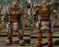 Darkspawn plate armor set Genlock.png