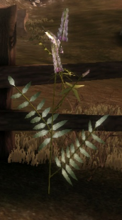 File:Deathroot.PNG