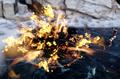 DAI-Immolate.png
